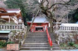 伊那下神社の境内